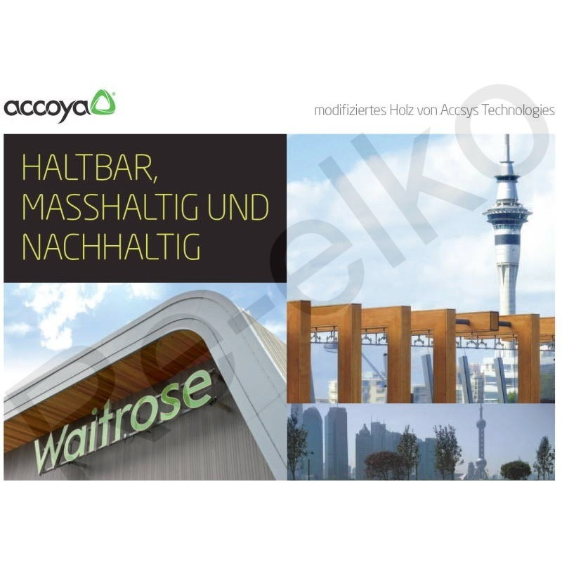 Accoya Flyer